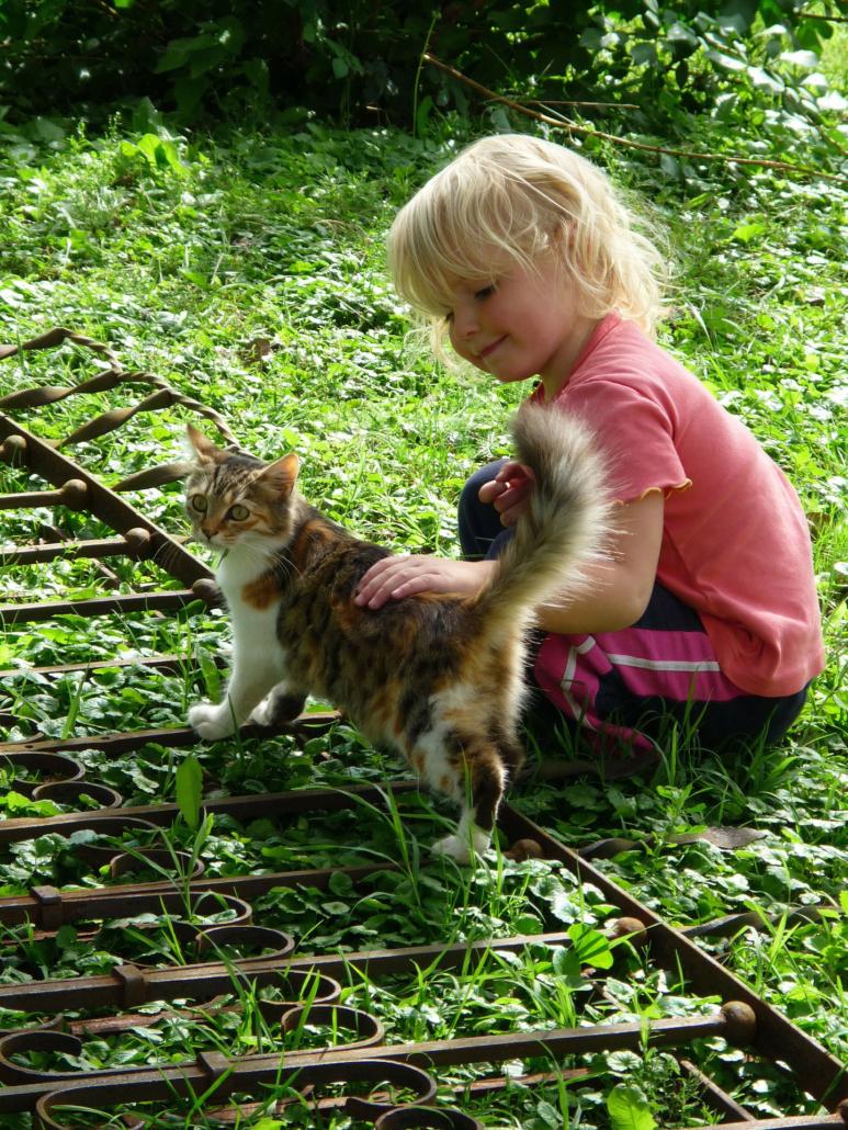 Glücklich mit Tieren